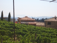Toskana- Montalcino